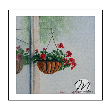 gallery2-hangingbasket
