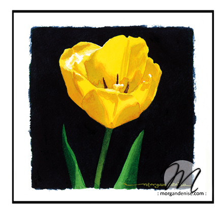 gallery2-yellowtulip